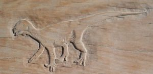thecodontosaurus carving