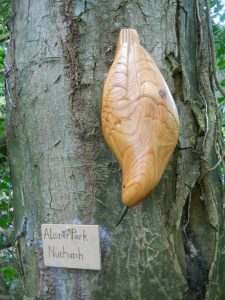 Nuthatch bird wood carving